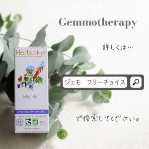 ジェモセラピーフリーチョイス